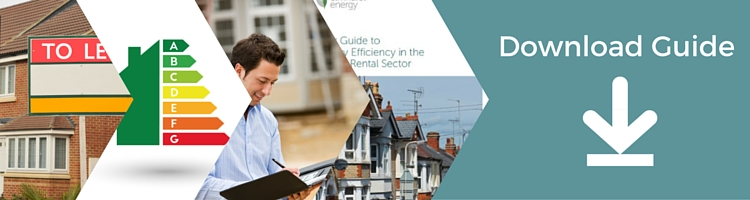 Energy Efficiency in the Private Rental Sector – PDF Download