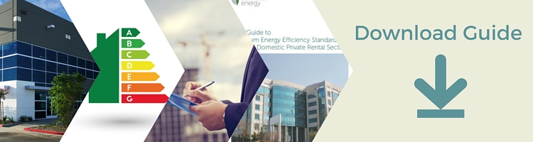 Energy Efficiency in the Non Domestic Private Rental Sector – PDF Download